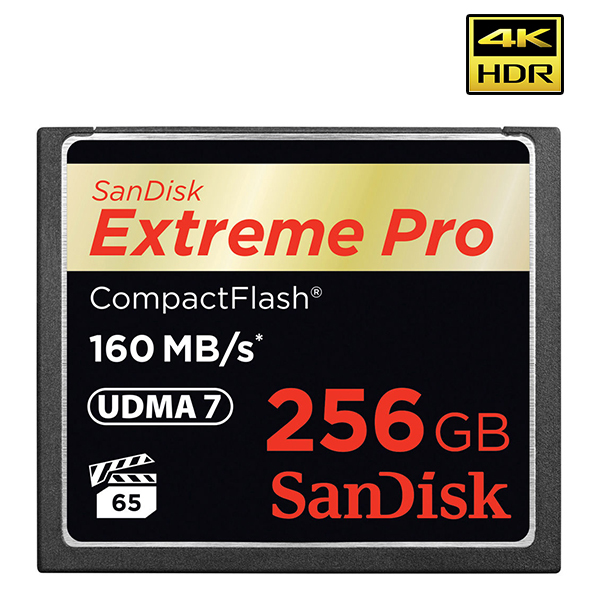 Carte mémoire compact flash - SANDISK  256 GB - CF EXTREME PRO